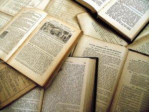 Досрочный ЕГЭ по литературе
